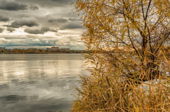 Autumn at Kharkiv park with lake. Fall tree at the Kharkiv park with lake at cloudy weather Royalty Free Stock Photography
