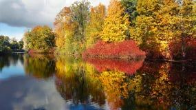 Autumn kiss Royalty Free Stock Image