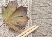 Autumn knitting. Knitting warm clothes for cold autumn weather. Colourful leaf in fall and a pair of traditional knitting needles stock photos