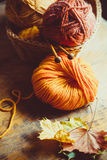 Autumn Knitting fotos de stock royalty free