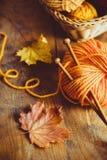 Autumn Knitting royalty-vrije stock afbeeldingen