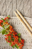 Autumn knitting. Knitting warm clothes for cold autumn weather. Colourful red berries in fall and knitting needles royalty free stock images