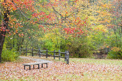 autumn kolorowa Zdjęcie Stock