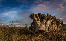 autumn kolorowe krajobrazu w kontekście niebieskie chmury odpowiadają trawy zielone niebo białe wispy natury Zdjęcia Royalty Free