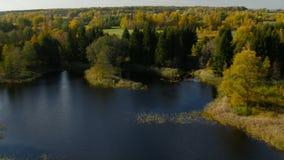 autumn kolorowe krajobrazu w kontekście niebieskie chmury odpowiadają trawy zielone niebo białe wispy natury zdjęcie wideo