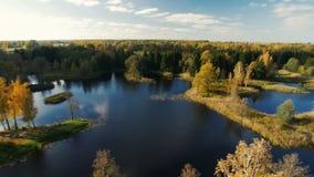 autumn kolorowe krajobrazu w kontekście niebieskie chmury odpowiadają trawy zielone niebo białe wispy natury zbiory wideo