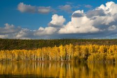 Autumn in Kolyma. Autumn landscape in the northern autumn river. The picture is illustrative Royalty Free Stock Images