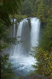 Autumn at Koosah Falls Central Oregon Royalty Free Stock Photo