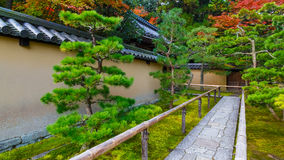 Autumn at Koto-in in Kyoto, Japa royalty free stock photo
