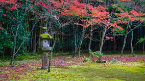 Autumn at Koto-in a Sub Temple of Daitokuji Temple in Kyoto Stock Photo