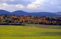 autumn krajobrazu zdjęcia royalty free