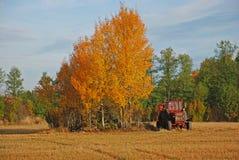 autumn krajobrazu ciągnika Fotografia Royalty Free