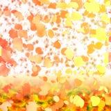autumn kwiecista Fotografia Stock