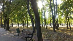 Autumn. In Kyiv Stock Photo