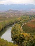 Autumn in la rioja Royalty Free Stock Image