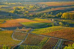 Autumn in La Rioja is a stunning spectacle of color that shapes the landscape. stock photos