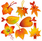 Autumn label Royalty Free Stock Photography