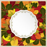Autumn label, circle frame with yellow leaves Royalty Free Stock Image