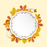 Autumn label, circle frame with yellow leaves. Autumn background, cutout paper label, circle frame with fallen yellow chestnut leaves Stock Images