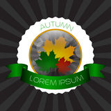 Autumn label Royalty Free Stock Images