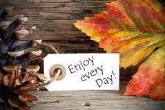 Autumn Label with Enjoy every Day. An Autumn Label with the Words Enjoy every Day, on Wood Stock Photos