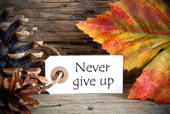 Autumn Label with Never Give Up Royalty Free Stock Images