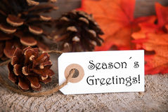 Autumn Label with Seasons Greetings. An Autumnal Label with the Words Seasons Greetings, Fall Background Stock Photos