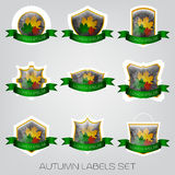 Autumn labels set. With colored leaves and green ribbon Stock Images