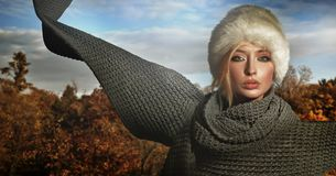 Autumn lady Stock Image