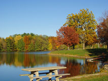 Autumn on the Lake. Beautiful leaves as trees turn to show bright fall colors in the mid autumn air stock photography