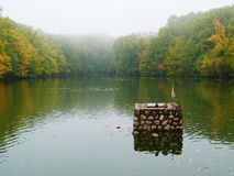 Autumn lake. Covered with fog Stock Photos