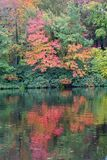 Autumn Lake. Autumn trees reflect in the still waters of a mountain lake Royalty Free Stock Photos