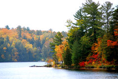 Autumn lake Stock Image