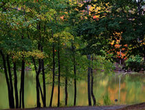 Autumn on the Lake. The first glimpse of autumn is reflected in this peaceful lake scene Royalty Free Stock Photos