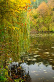 Autumn lake Royalty Free Stock Photography