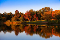 Autumn at the lake Royalty Free Stock Image