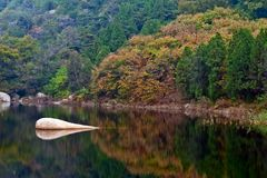 Autumn lake. The lake in autumn,very beautiful scenery Royalty Free Stock Images