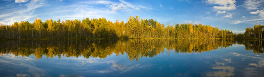 The autumn lake Stock Images