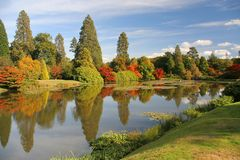 Autumn lake. Autumn colors of trees reflecting in beautiful lake at Sheffield park, sussex, England Royalty Free Stock Photo