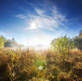 Autumn lake Stock Image