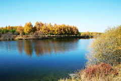 Autumn Lake. A view of an autumn lake with a peaceful feeling Stock Image