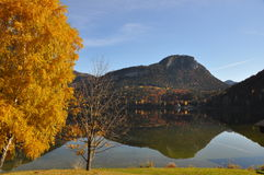 Autumn lake in austria Stock Photo