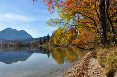 Autumn lake in austria Stock Image