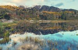 Autumn lake Royalty Free Stock Photography