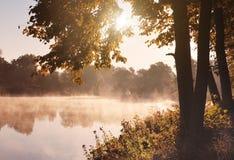 Autumn lake. Beautiful morning lights Stock Photography