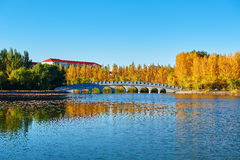 The autumn lake and bridge Royalty Free Stock Images
