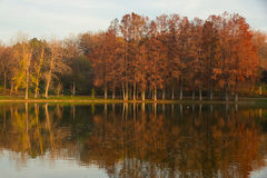 Autumn on the lake Royalty Free Stock Image