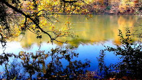 Autumn on the Lake. Colorful fall foliage reflects in the Lake on an autumn day, full HD video stock video