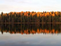 Autumn at lake. Autumn colours on trees. Ruska Royalty Free Stock Images