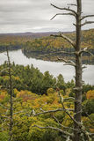 Autumn Lake and Dead Pine - Ontario, Canada. View overlooking a lake surrounded by a forest in autumn - Algonquin Provincial Park, Ontario, Canada stock image